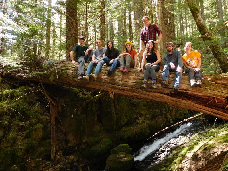 Kutztown University Geology Club - hiking in Washington             rain forest